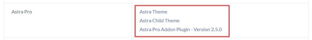 Astra 佈景主題教學,1 款適合所有人的 WordPress 主題 | 11